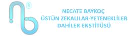 Necate Baykoç